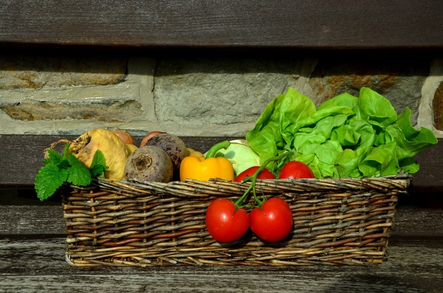 Vegetables, Tomatoes, Salad, Vegetable Basket, Garden